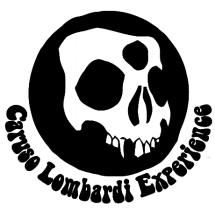 caruso.lombardi.experience