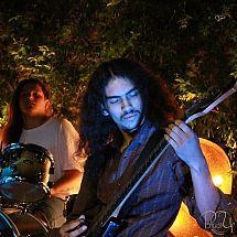 tom.amps
