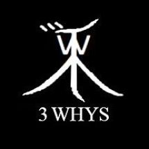 the3whys1